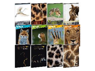 Ars Una Wildlife Moments A/4 extra kapcsos füzet-kockás