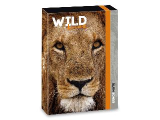 Ars Una Wildlife Moments A/4 füzetbox