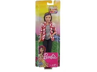 Barbie Dreamhouse Adventures - Skipper alap baba