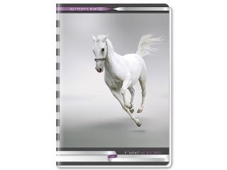 Fehér lovas A/4-es kapcsos kockás füzet