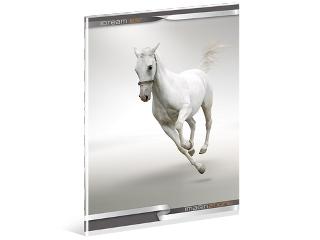 Fehér lovas A/5-ös kapcsos sima füzet