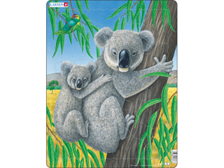 Koala D7
