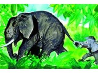 Jumbo egy kis elefant kalandja diafilm