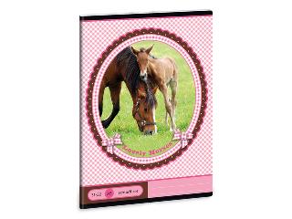 My Horse A/5-ös szótárfüzet