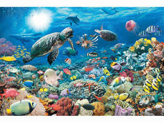 Korallzátony  5000 darabos kirakó