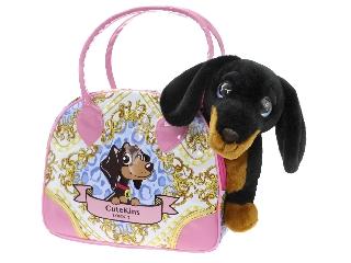 Tacsi táskában